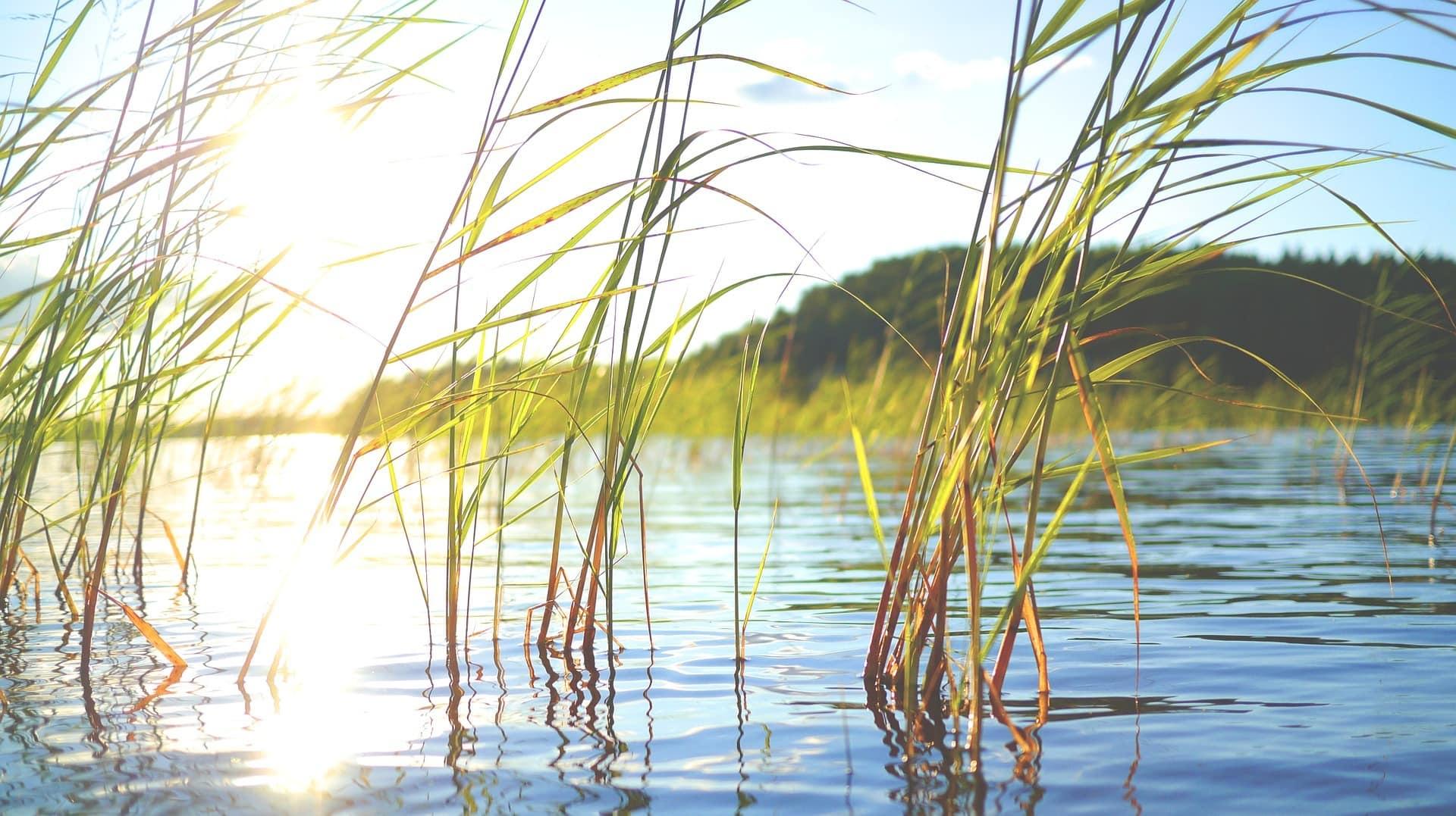Päijänne ist ein See in Finnland