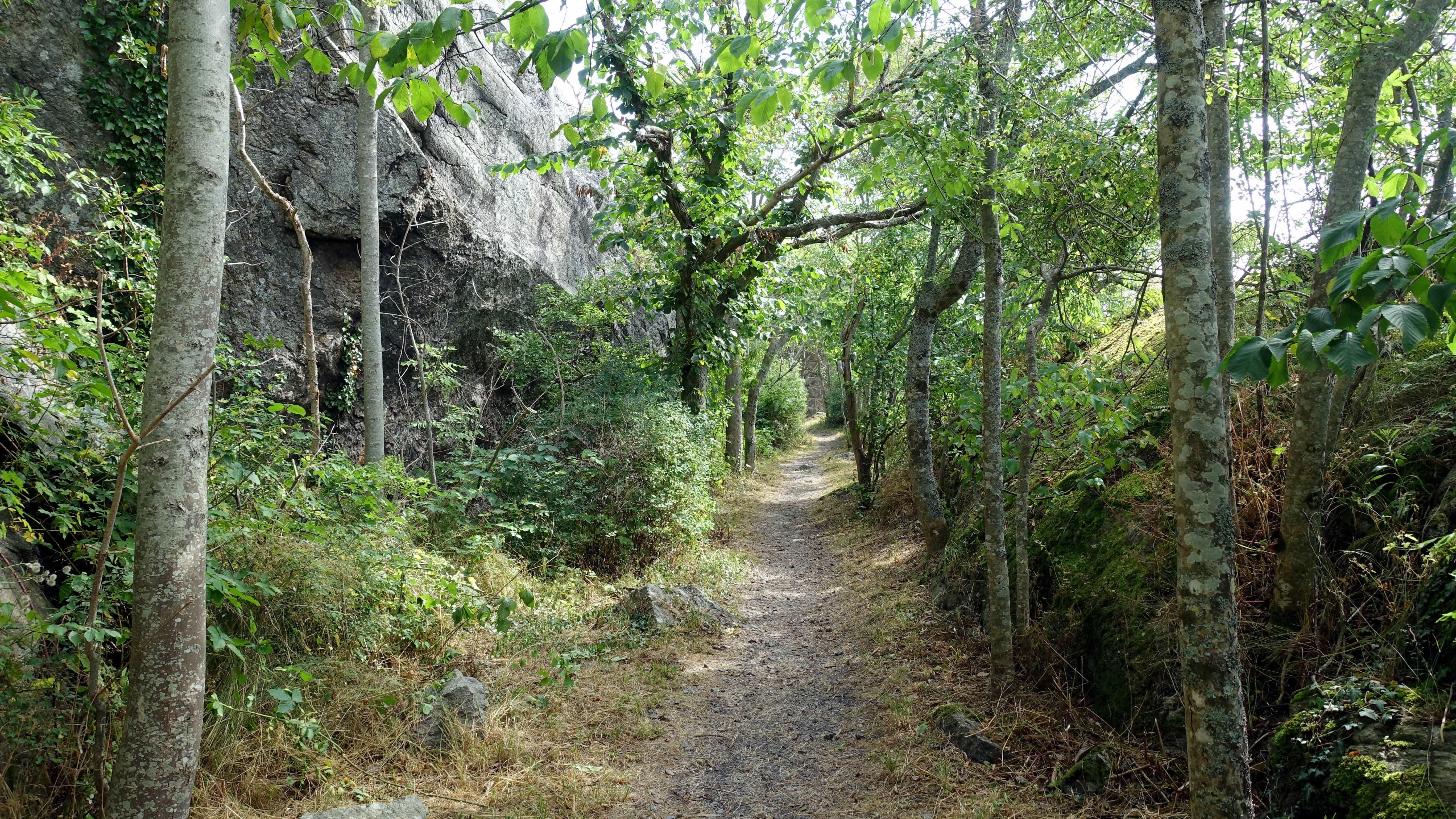 Rund um die Festung Carlsten kannst du einen 5 Kilometer langen Wanderweg entlanglaufen.