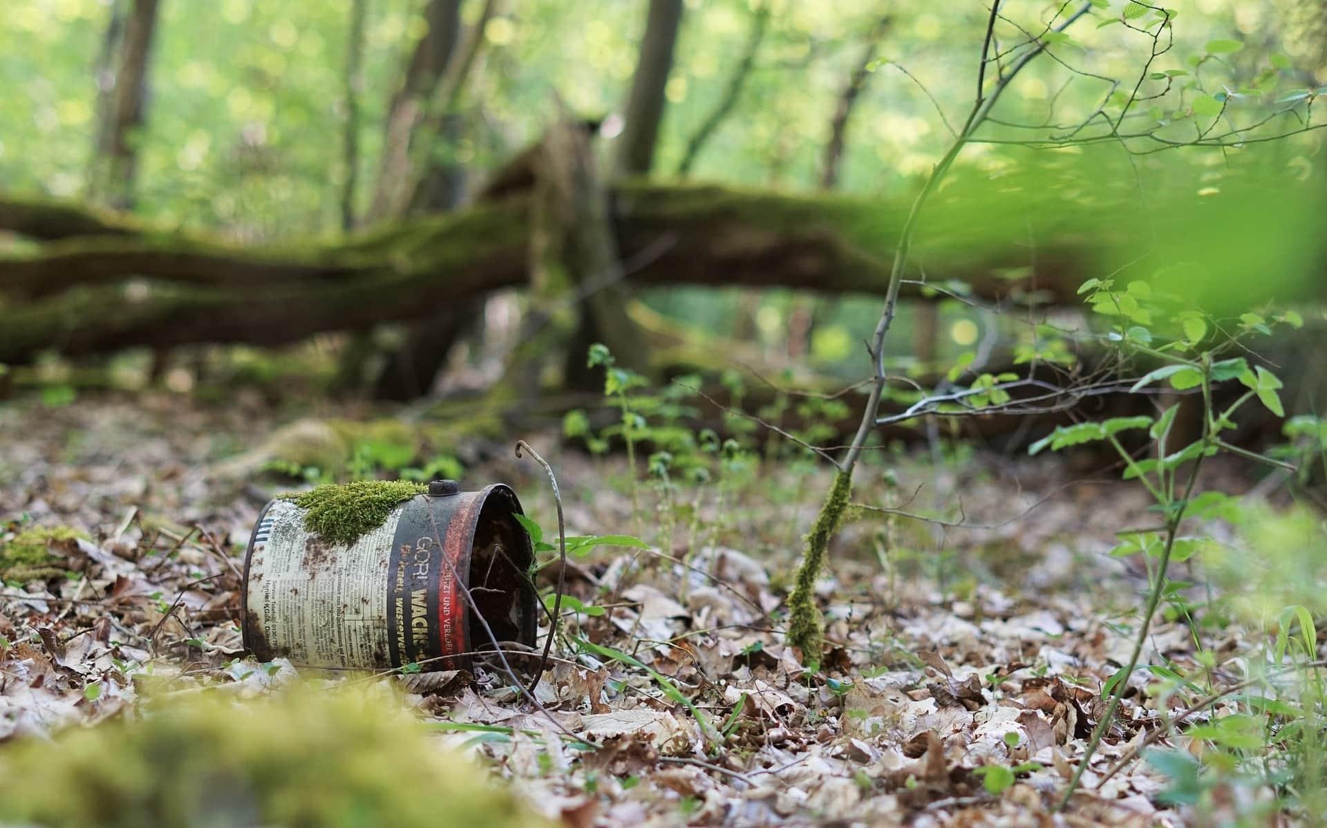 Wenn du dich für Plogging nicht fit genug fühlst, kannst du natürlich auch beim Spaziergang Müll aufsammeln. Oder Plalken – walken und Müll sammeln eben.