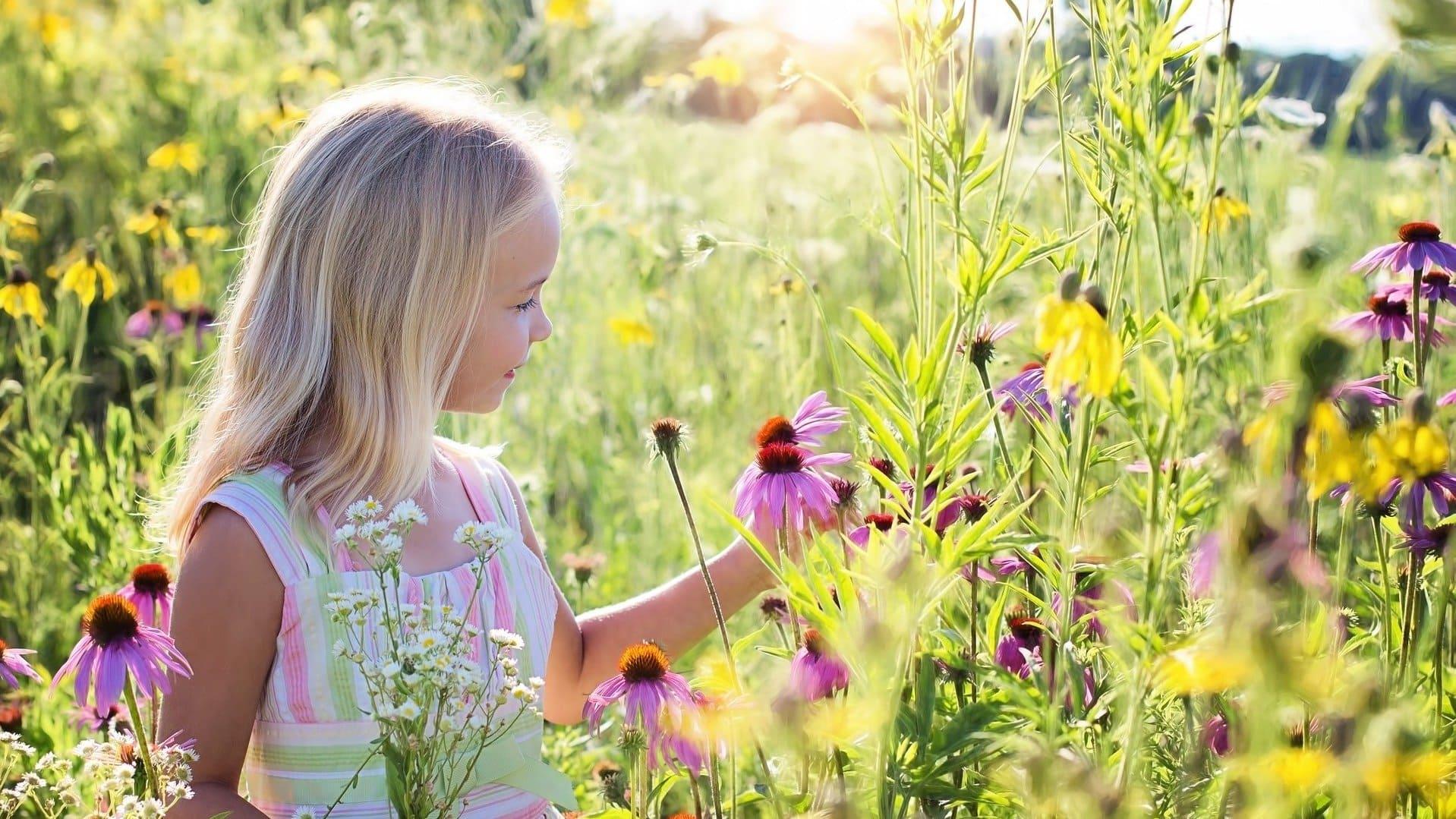 Magst du Blumen? Wir mögen die Wilde Pracht